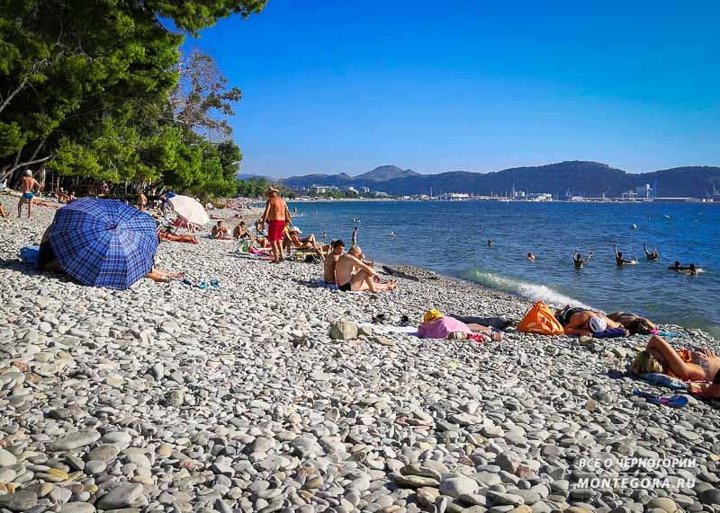 Пляж Жукотрлица является продолжением пляжа Бара