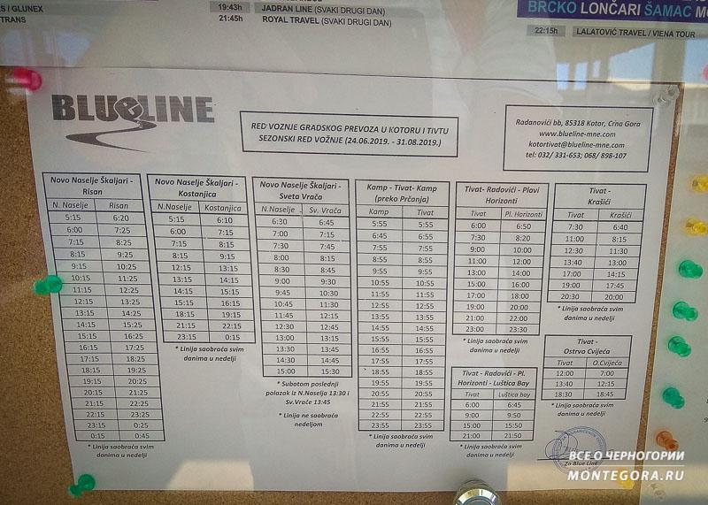 В какое время выезжают автобусы из Тивата
