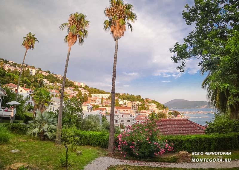 Куда поехать и где отдохнуть в Черногории