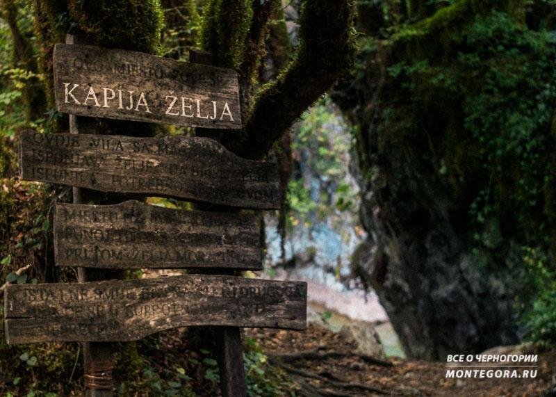 Как добраться до нужного места у каньона Мртвица в Черногории