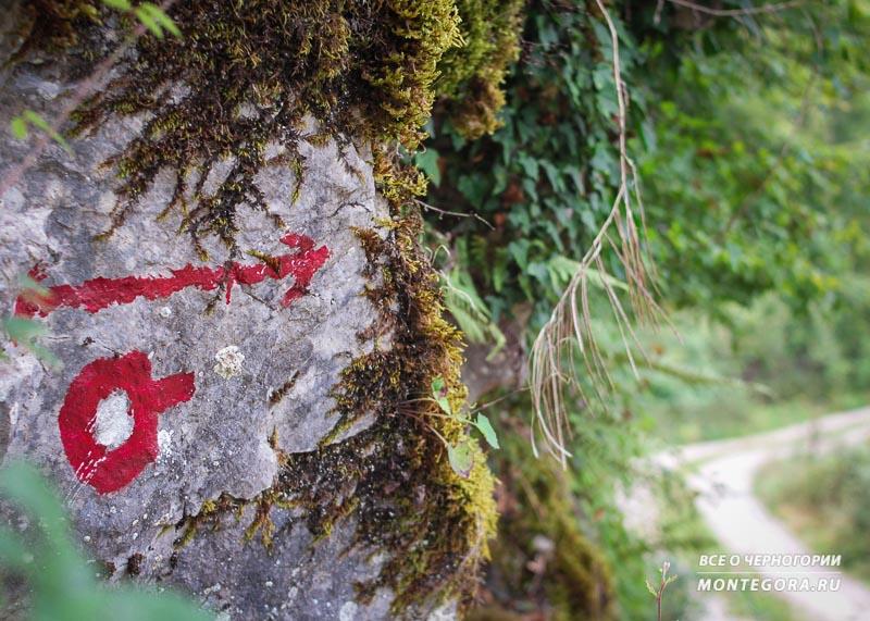 Как своим ходом добраться до Мртвицы каньона