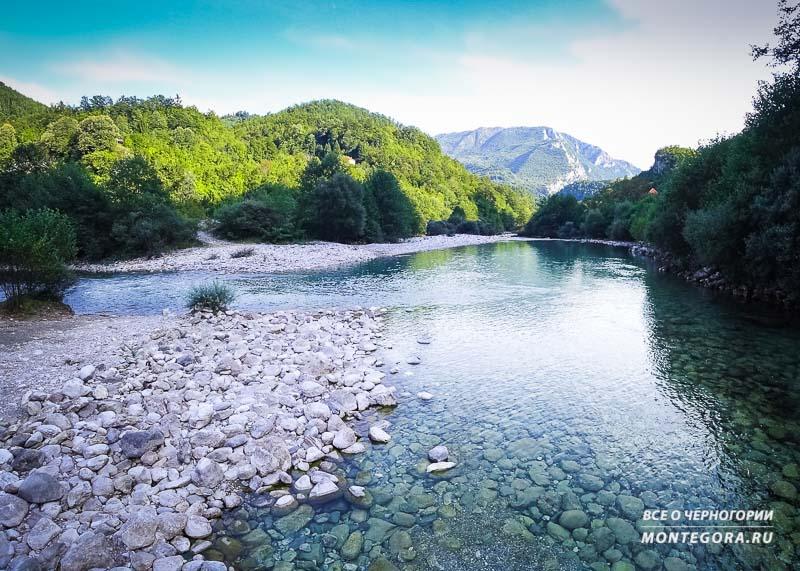Река Мртвица впадает в реку Морача