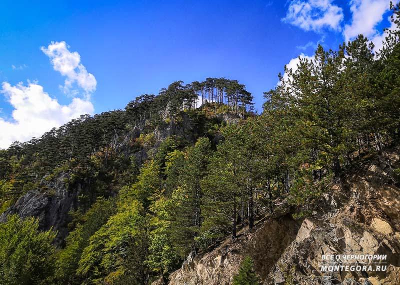 Космически красивые природные места в Черногории