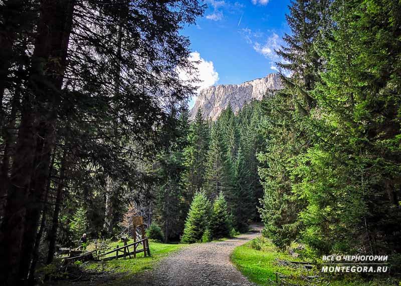 Что из себя представляет красота Черногорской природы