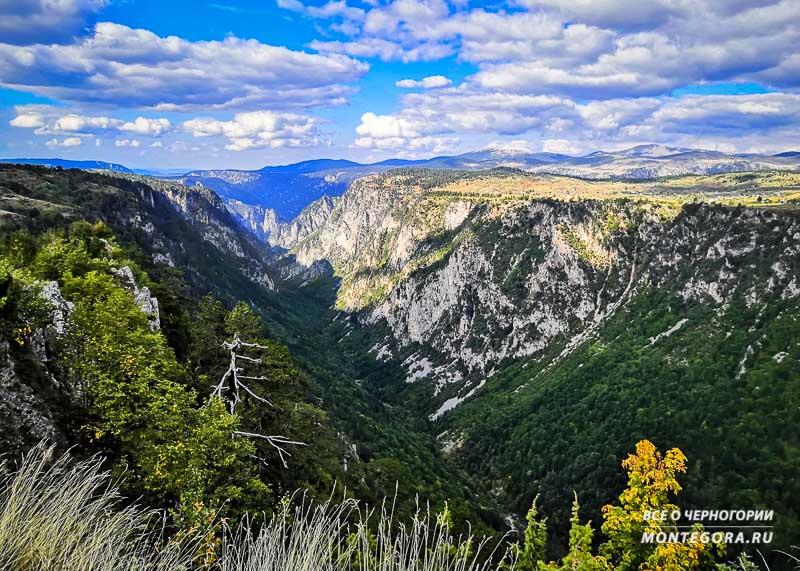 Панорамный вид на каньон реки Сушичка