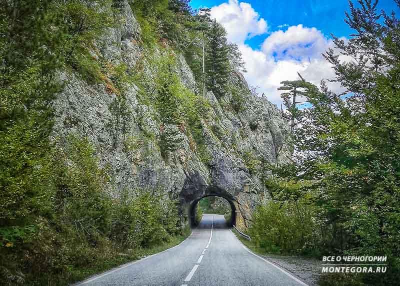 Как и на чём добраться до нужного места в Черногории