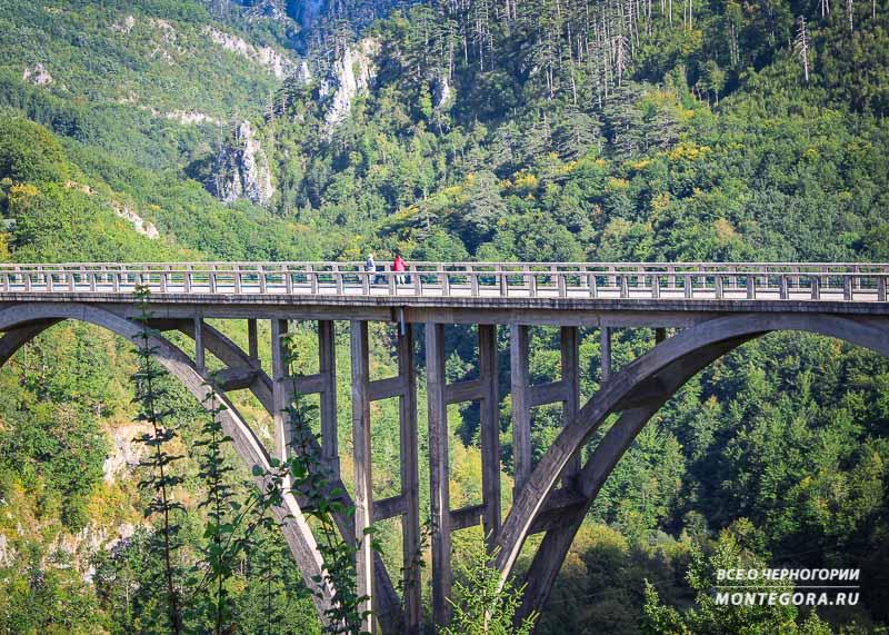 Самые красивые Черногорские панорамы