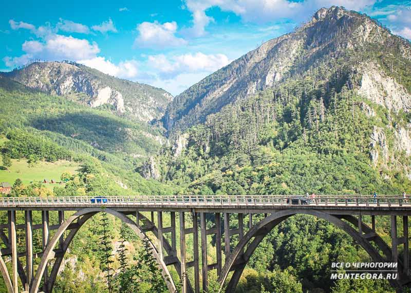 В этой статье вы узнаете об истории моста Джурджевича